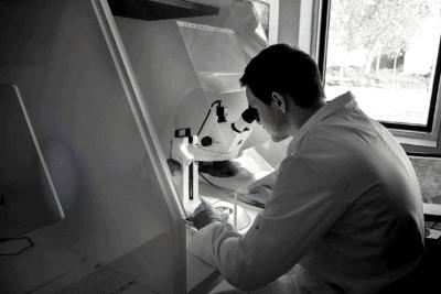 man kijkt onder de microscoop voor bodemonderzoek
